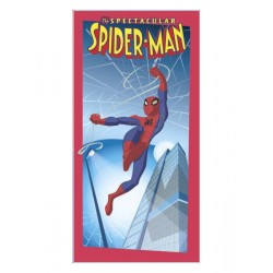 drap de plage spiderman spectacular